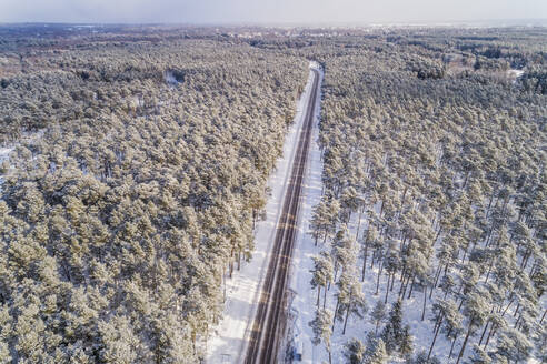 Aerial view of an empty straight road in the forest of Naage in Estonia - AAEF02510