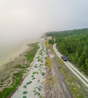 Aerial view road going in the edge of forest at Forby on Vormsi island, Estonia - AAEF02633
