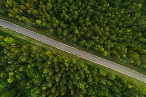 Aerial view of road going through forest in Estonia - AAEF02639