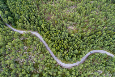 A road in the forest in the Graensoe in West Sweden - TAMF02147