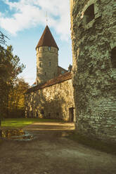 The old city walls of Tallinn with towers, Estonia - TAMF02159