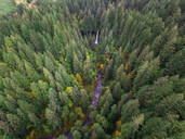 Aerial view of Silver falls state Park in Oregon, USA - AAEF03043