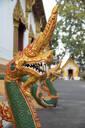 Naga guardian at the Wat Inpeng Buddhist temple, Rue Samsenthai, Vientiane, Laos, Indochina, Southeast Asia, Asia - RHPLF00677