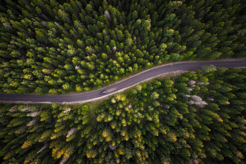 Aerial view of car on empty road in the forest in Estonia - AAEF03634