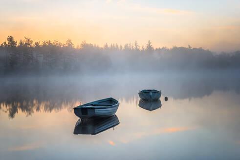 Loch Rusky, Perthshire, Scotland, United Kingdom, Europe - RHPLF01231
