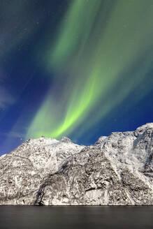 Northern Lights (aurora borealis) illuminate the snowy peaks and the blue sky during a starry night, Budalen, Svolvaer, Lofoten Islands, Arctic, Norway, Scandinavia, Europe - RHPLF01384