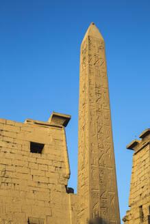 Oblelisk at temple entrance, Luxor Temple, UNESCO World Heritage Site, Luxor, Egypt, North Africa, Africa - RHPLF02045