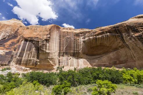 Navajo sandstone in Lower Calf Creek Falls Trail, Grand Staircase-Escalante National Monument, Utah, United States of America, North America - RHPLF02069