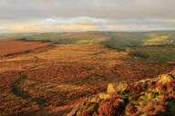 Hathersage Moor from Higger Tor, sunrise in autumn, Peak District National Park, Derbyshire, England, United Kingdom, Europe - RHPLF02096