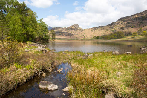 Blea Tarn, Little Langdale, The Lake District, UNESCO World Heritage Site, Cumbria, England, United Kingdom, Europe - RHPLF03214