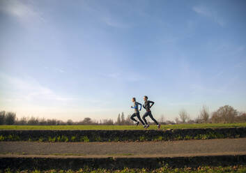 Two teenagers jogging in a park - AJOF00016