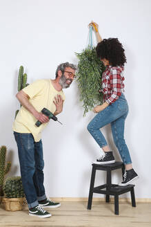 Couple hanging plant on the wall at home - RTBF01342
