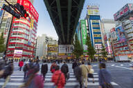 Neon signs cover buildings in the consumer electronics district of Akihabara, Tokyo, Japan, Asia - RHPLF04592