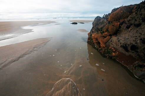 Low tide, Bude, Cornwall, England, United Kingdom, Europe - RHPLF05438