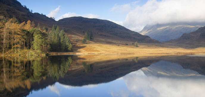 Panoramic Image of autumn colours reflected at Blea Tarn, Langdale Pikes, Lake District National Park, UNESCO World Heritage Site, Cumbria, England, United Kingdom, Europe - RHPLF05852