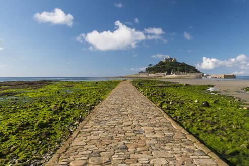 St. Michaels Mount, Marazion, Cornwall, England, United Kingdom, Europe - RHPLF06089
