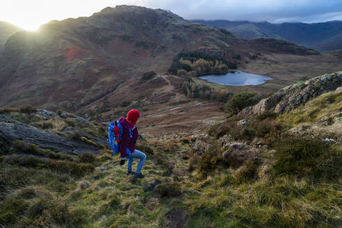 A woman hiking from Lingmoor Fell descends to Blea Tarn and Great Langdale in the Lake Distirct National Park, UNESCO World Heritage Site, Cumbria, England, United Kingdom, Europe - RHPLF06296