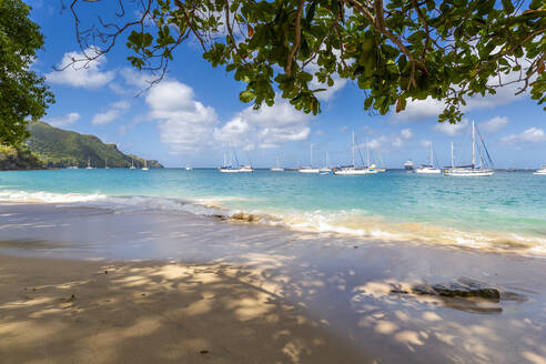 The beach at Port Elizabeth, Admiralty Bay, Bequia, The Grenadines, St. Vincent and the Grenadines, Windward Islands, West Indies, Caribbean, Central America - RHPLF07300