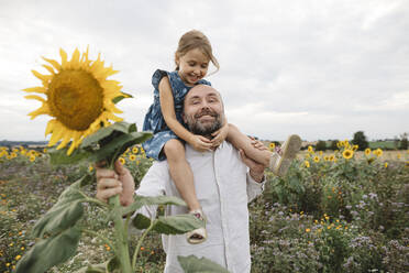 Happy man carrying daughter in a sunflower field - KMKF01068