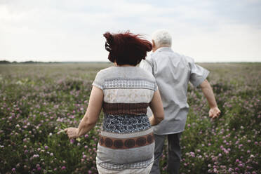 Back view of senior couple running on flower meadow - EYAF00423