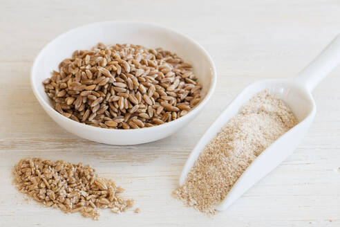 Ancient grains, Emmer in bowl as grain, flakes and flour - EVGF03450