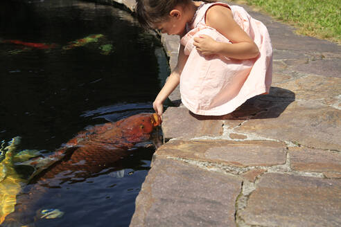 Girl at a pond with kois - DRF01752