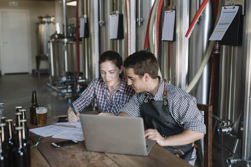 Young entrepreneurs working at a brewery - ALBF01053