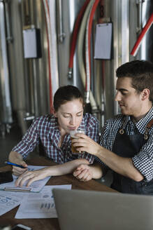Young entrepreneurs working at a brewery testing beer - ALBF01059