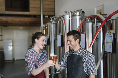 Happy young entrepreneurs at a brewery clinking beer glasses - ALBF01062