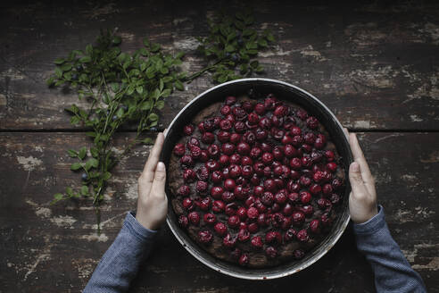 Russia, Moscow, boy;s hands keeping cherry brownie pie - EYAF00460