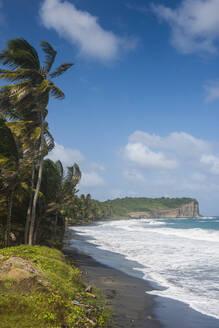 Scenic view of Antoine bay in north of Grenada, Caribbean - RUNF02967