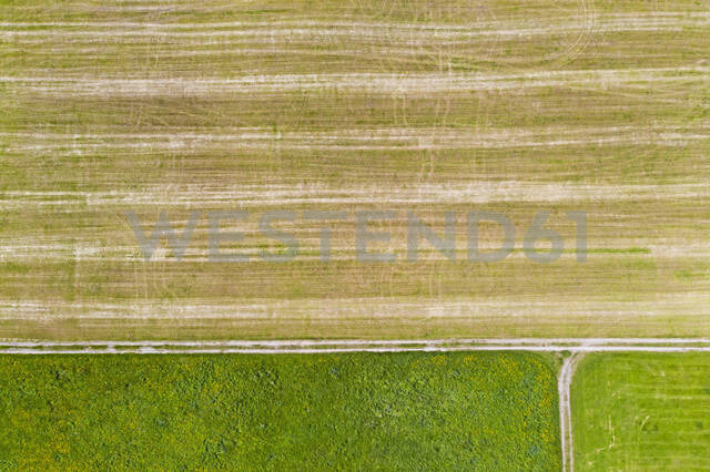 Aerial view of agricultural field, Beuerberg, Germany - LHF00683 - Hans Lippert/Westend61