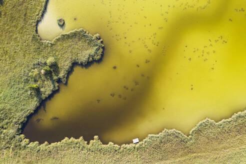 Drone shot of Harmatinger pond, Egling, Germany - LHF00689