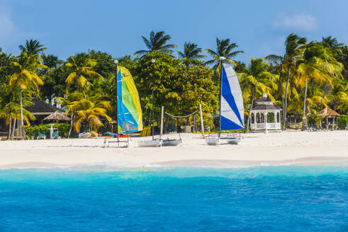 Catamarans on a beautiful palm fringed white sand beach on Palm island, Grenadines islands, St. Vincent and the Grenadines, Caribbean - RUNF03085