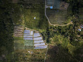 Aerial view of farm at Bali island, Indonesia - KNTF03389