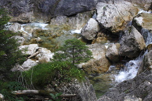 High angle view of river flowing in forest at Fussen, Germany - JTF01312