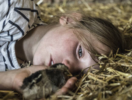 Close up girl holding baby chick in straw - FSIF04426