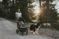 Mother with baby in stroller and dog walking on forest path at sunset - DWF00514