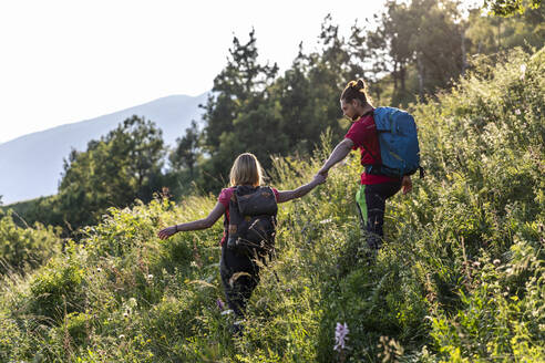 Young couple hiking in mountain meadow - MCVF00012