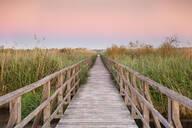 Boardwalk at sunrise, Federsee Lake, Nature reserve, Bad Buchau, Upper Swabia, Baden-Wurttemberg, Germany, Europe - RHPLF09103