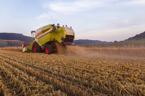 Organic farming, wheat field, harvest, combine harvester in the evening - SEBF00229