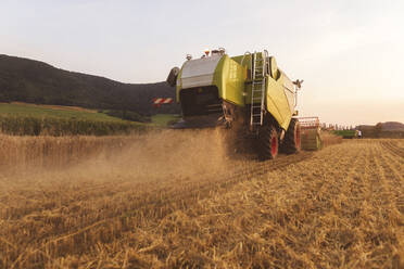 Organic farming, wheat field, harvest, combine harvester in the evening - SEBF00235