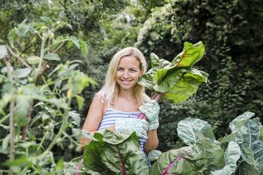 Blond woman harvesting mangold - HMEF00514