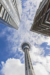 Low angle view of Sky Tower against cloudy sky in Auckland, New Zealand - FOF10894
