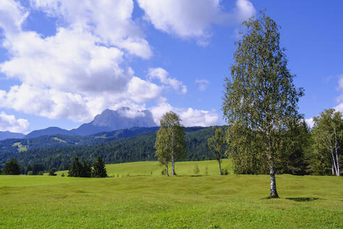 Scenic view of humpback meadows against sky at Mittenwald, Werdenfelser Land, Upper Bavaria, Bavaria, Germany - SIEF09028