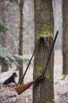 Riffle hanging on tree - JOHF00753