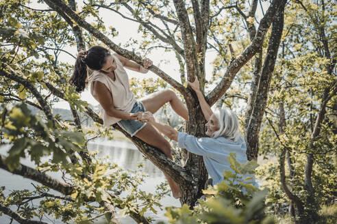 Mother and daughter having fun, climbing a tree - JOSF03771