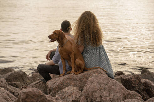 Young couple with dog at the beach in the evening - VPIF01502