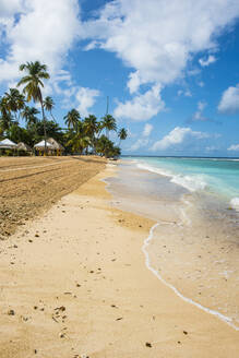 Scenic view of palm trees at Pigeon Point Beach against sky, Trinidad And Tobago, Caribbean - RUNF03173