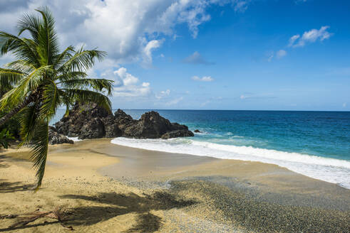 Turtle beach, Tobago, Trinidad and Tobago, Caribbean - RUNF03176